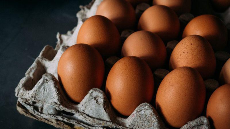 D huevo